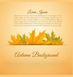 abstract colorful autumn season poster vector image