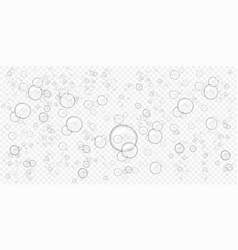 Abstract foam water bubbles isolated on vector