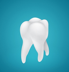 Healthy human teeth vector