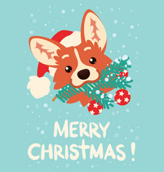 merry christmas and happy new year cute corgi dog vector image