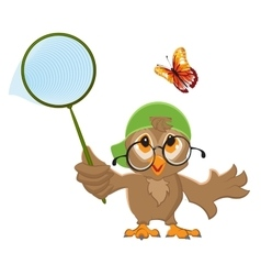 Owl Catches butterfly Bird and butterfly net vector
