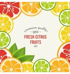 Grapefruit lime lemon and orange with mint vector image