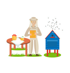 beekeeper in apiary is engaged in breeding bees vector image