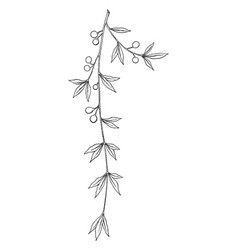 laurel intarsia panel branch is inlayed wood that vector image
