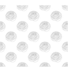 Outline ranunculus on white background vector