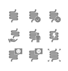 Set human intestine grey icon healthy internal vector