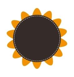 sunflower flower plant design vector image