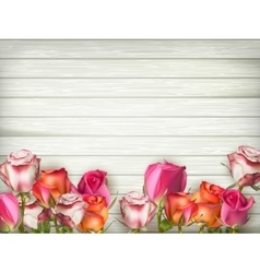 Valentines day background with roses EPS 10 vector image