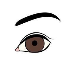 Woman eye vector