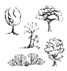 Hand drawn trees set vector image