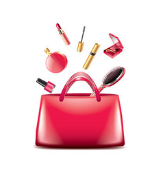 women bag cosmetics isolated vector image