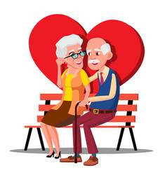 elderly couple hugging on the bench with big red vector image