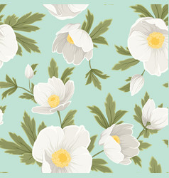 hellebore anemone christmas rose white yellow vector image