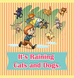 Raining cats and dogs vector