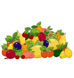 set of summer fruits and berries vector image