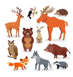 Wild europe animals set in flat style vector