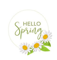 hello spring beautiful daisy wreath isolated vector image