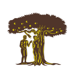 Adam and eve apple serpent woodcut vector
