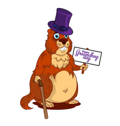 cartoon old groundhog in a hat with cane and sign vector image
