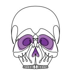 continuous line skull icon vector image