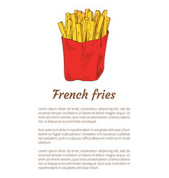 french fries isolated on white backdrop banner vector image