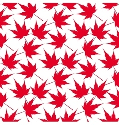 Red maple leaves Seamless pattern Canada vector image