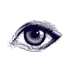 Human etched eye vector image