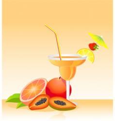 Tropical liqueur vector