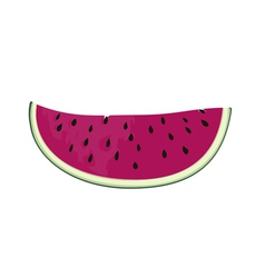 slice of nice fresh watermelon vector image