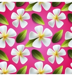 Frangipani flowers seamless pattern vector