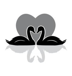 Swans black vector