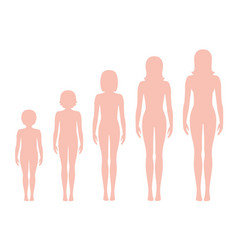 womens body proportions changing with age vector image vector image