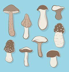 Different types of mushrooms vector image vector image