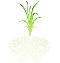 A green grass vector image