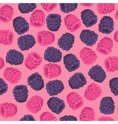 Blackberries and Raspberries Seamless Pattern vector image