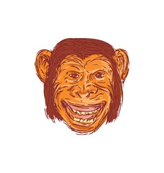 Chimpanzee Head Front Isolated Drawing vector