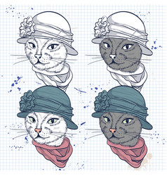 color set of elegant cat women face vector image