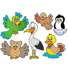 cute birds collection 2 vector image
