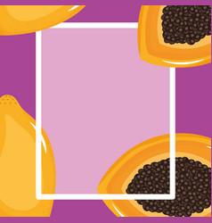 Fresh papaya square frame vector