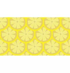 Lemon pattern background vector image