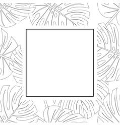 Philodendron monstera leaf outline banner card vector
