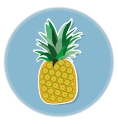 pineapple flat vector image