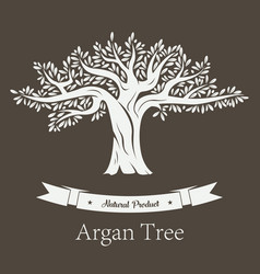 argan plant or argania flora fruit tree vector image