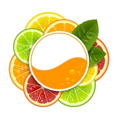Round Banner with Citrus Fruits vector image