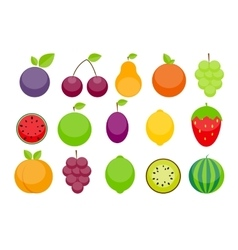 Apple Orange Plum Cherry Lemon Lime vector