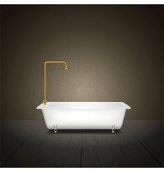 Bath on grey background vector image vector image