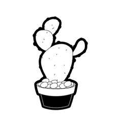 Cactus in the potted vector