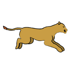 Female lion african animal courageous creature vector
