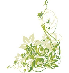 floral border element vector image