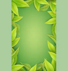 lush green leaves on a green background vector image